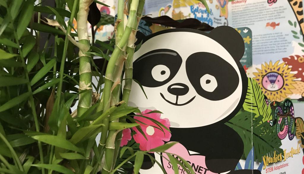Image of Panda behind trees